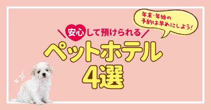 松山ペットホテル4選