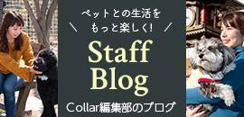 Collar編集部のブログ